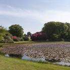 round_pond1