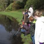 garden_ranger_pond_dipping